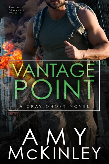 Vantage Point Amy Mckinley E-Cover.jpg